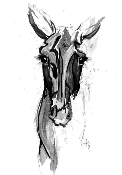 pferdekopf gemalt schwarz weiß