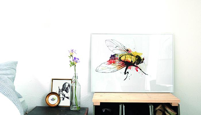 foto fliege schlafzimmer wallstories