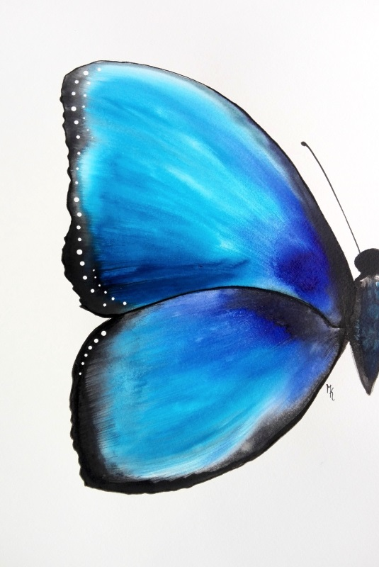 butterfly schmetterling painted gemalt
