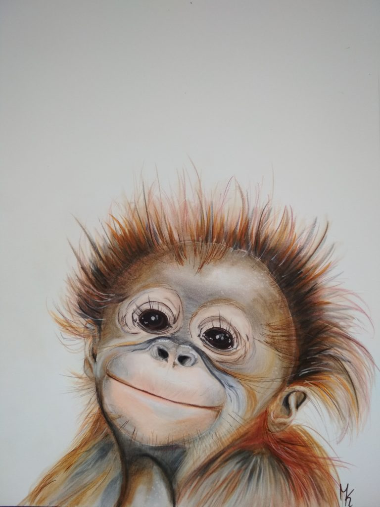 süßes Affenbaby Orang Utan